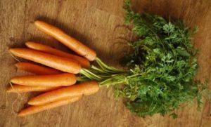 Karotten Lebensmittel