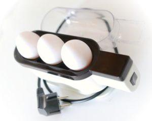 3er Eierkocher Test