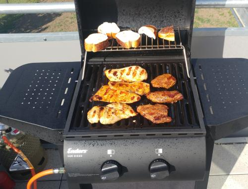 Enders Gasgrill Website : Review: enders gasgrill u201esan diego 2u201c unter 100 euro